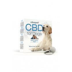 Pastilles CBD pour chiens
