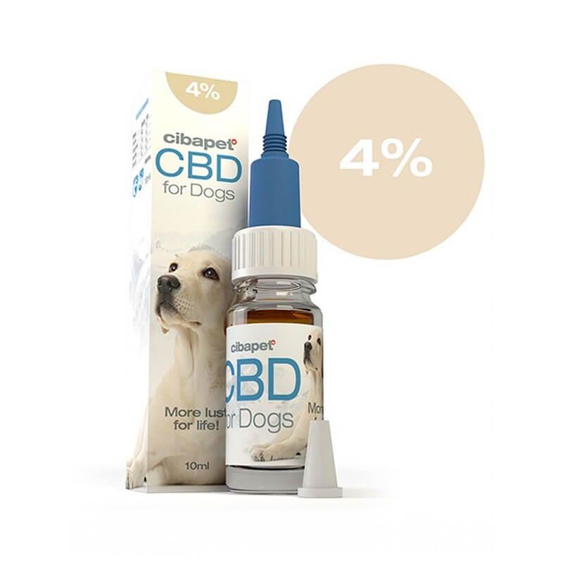 Huile CBD 4 % pour chiens